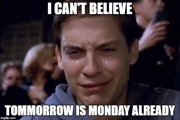 Tobey Maguire |  I CAN'T BELIEVE; TOMMORROW IS MONDAY ALREADY | image tagged in tobey maguire | made w/ Imgflip meme maker