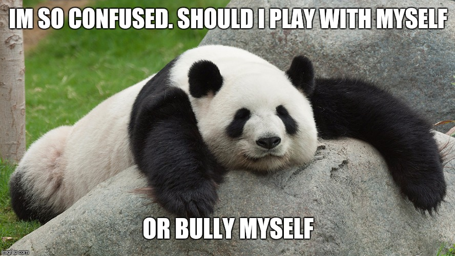 IM SO CONFUSED. SHOULD I PLAY WITH MYSELF OR BULLY MYSELF | made w/ Imgflip meme maker