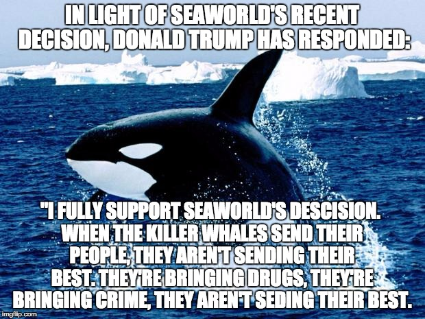 "We need to build a wall on our eastern border! | IN LIGHT OF SEAWORLD'S RECENT DECISION, DONALD TRUMP HAS RESPONDED: ""I FULLY SUPPORT SEAWORLD'S DESCISION. WHEN THE KILLER WHALES SEND THEIR 