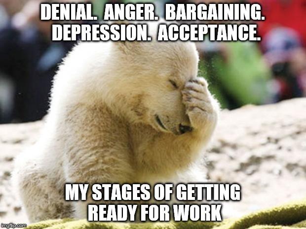 Sad Polar Bear Imgflip