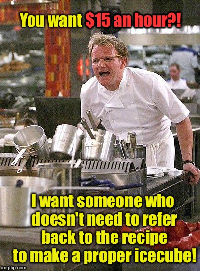 Can you cook for me NOW? |  $15 an hour?! You want $15 an hour?! I want someone who doesn't need to refer back to the recipe to make a proper icecube! | image tagged in hell's kitchen,recipe,ice cube,15 an hour | made w/ Imgflip meme maker