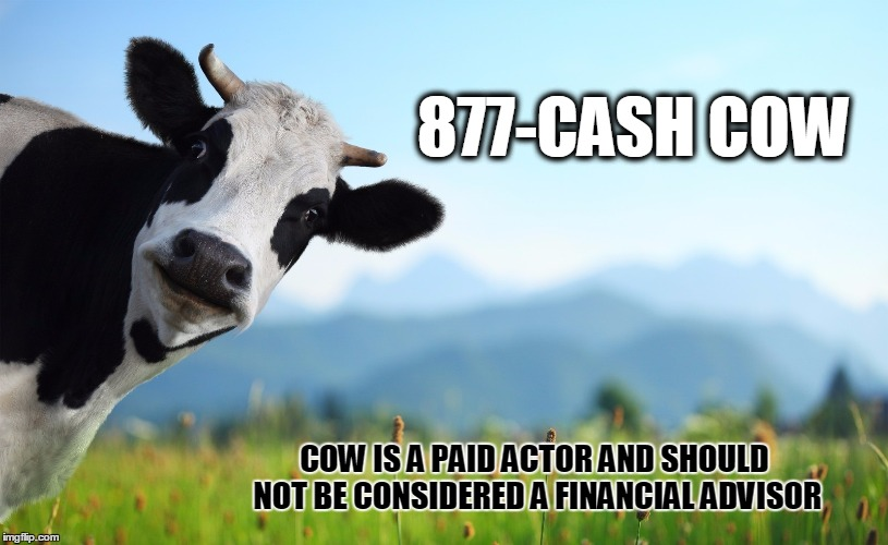 Never use a cow for financial advice | 877-CASH COW COW IS A PAID ACTOR AND SHOULD NOT BE CONSIDERED A FINANCIAL ADVISOR | image tagged in i should buy a boat cat,cows,shut up and take my money,not sure if | made w/ Imgflip meme maker
