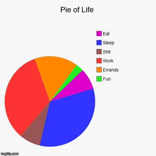 Pie Of Life Imgflip