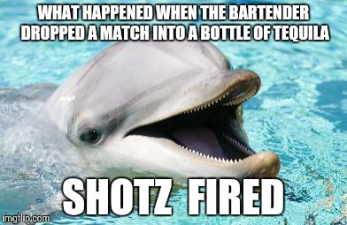 Dumb Joke Dolphin |  WHAT HAPPENED WHEN THE BARTENDER DROPPED A MATCH INTO A BOTTLE OF TEQUILA; SHOTZ  FIRED | image tagged in dumb joke dolphin | made w/ Imgflip meme maker
