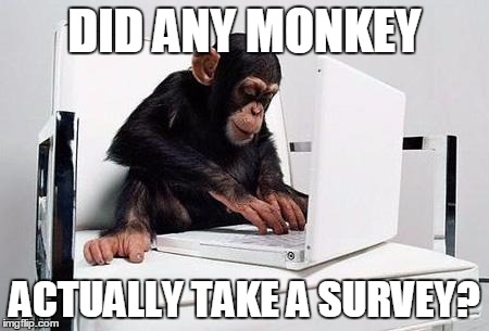Survey Monkey | DID ANY MONKEY ACTUALLY TAKE A SURVEY? | image tagged in monkey computer,survey,monkey,surveymonkey,cute animals,memes | made w/ Imgflip meme maker