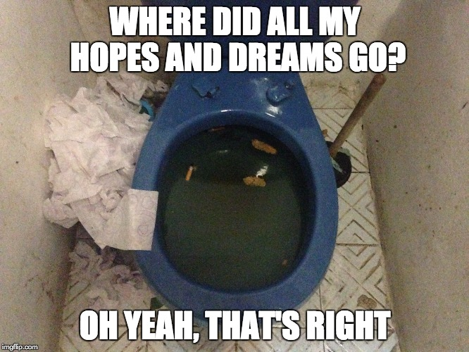 Toilet Humour | WHERE DID ALL MY HOPES AND DREAMS GO? OH YEAH, THAT'S RIGHT | image tagged in toilet humor,meme,reality bites,humour,funny,dreams | made w/ Imgflip meme maker