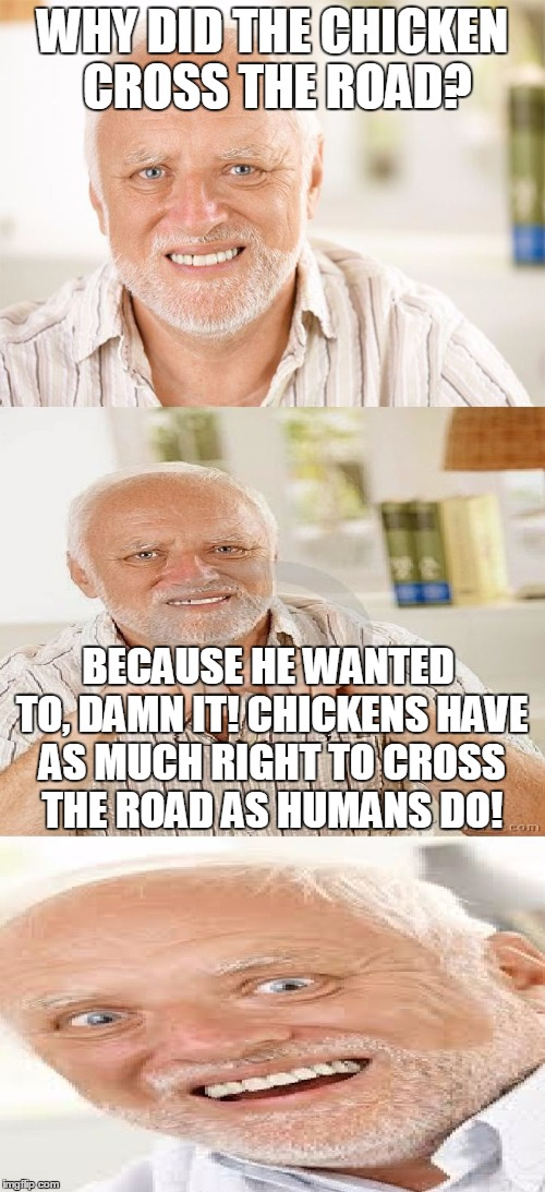 HORRIBLE Pun Harold | WHY DID THE CHICKEN CROSS THE ROAD? BECAUSE HE WANTED TO, DAMN IT! CHICKENS HAVE AS MUCH RIGHT TO CROSS THE ROAD AS HUMANS DO! | image tagged in horrible pun harold,dammit,chicken,why the chicken cross the road,memes,human | made w/ Imgflip meme maker