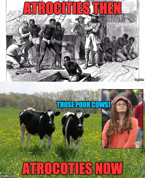 Atrocities aren't what they used to be |  ATROCITIES THEN; THOSE POOR COWS! ATROCOTIES NOW | image tagged in college liberal,cows,vegan,slavery | made w/ Imgflip meme maker