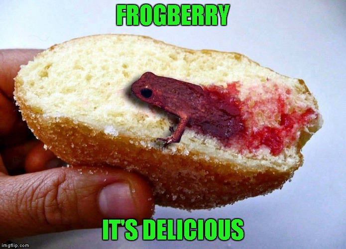 FROGBERRY IT'S DELICIOUS | made w/ Imgflip meme maker