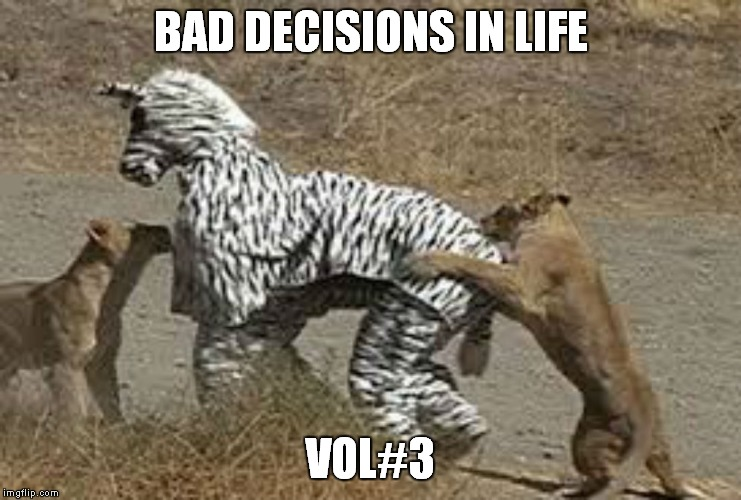Umm Bill... I think we look like dinner... | BAD DECISIONS IN LIFE VOL#3 | image tagged in decisions | made w/ Imgflip meme maker