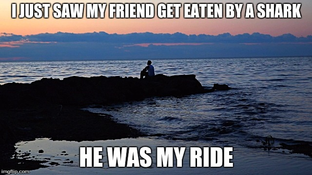 Dang | I JUST SAW MY FRIEND GET EATEN BY A SHARK HE WAS MY RIDE | image tagged in dang,memes | made w/ Imgflip meme maker