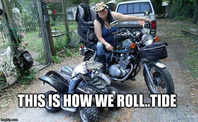 atv gator |  THIS IS HOW WE ROLL..TIDE | image tagged in atv gator,roll tide,how | made w/ Imgflip meme maker