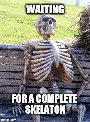 Waiting Skeleton Meme | WAITING FOR A COMPLETE SKELATON | image tagged in memes,waiting skeleton | made w/ Imgflip meme maker