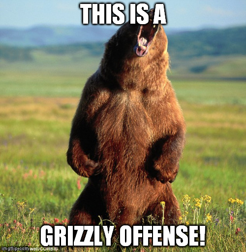 THIS IS A GRIZZLY OFFENSE! | made w/ Imgflip meme maker