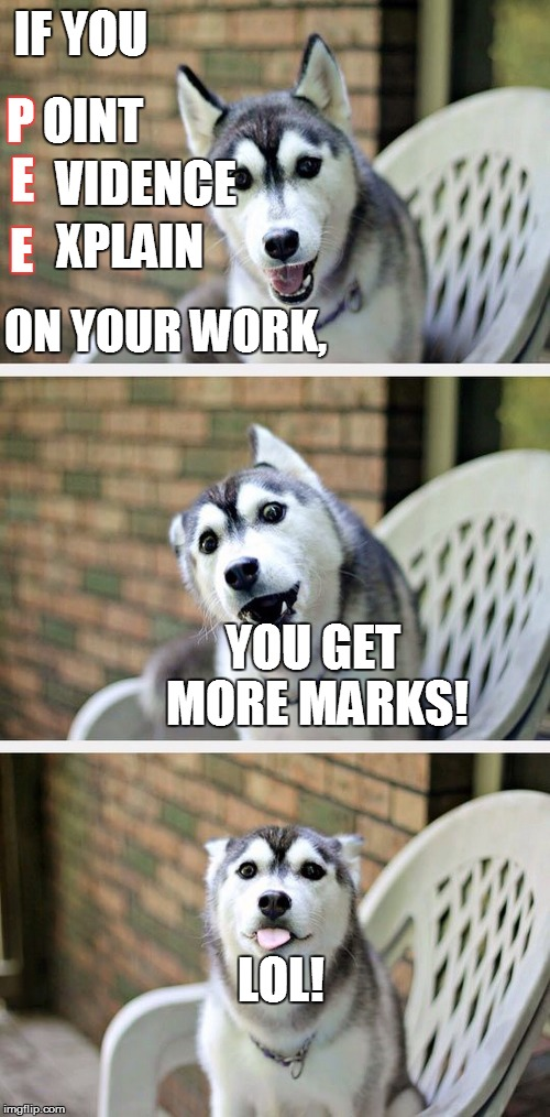 Bad Pun Dog 2 | IF YOU P OINT VIDENCE XPLAIN E E ON YOUR WORK, YOU GET MORE MARKS! LOL! | image tagged in bad pun dog 2 | made w/ Imgflip meme maker