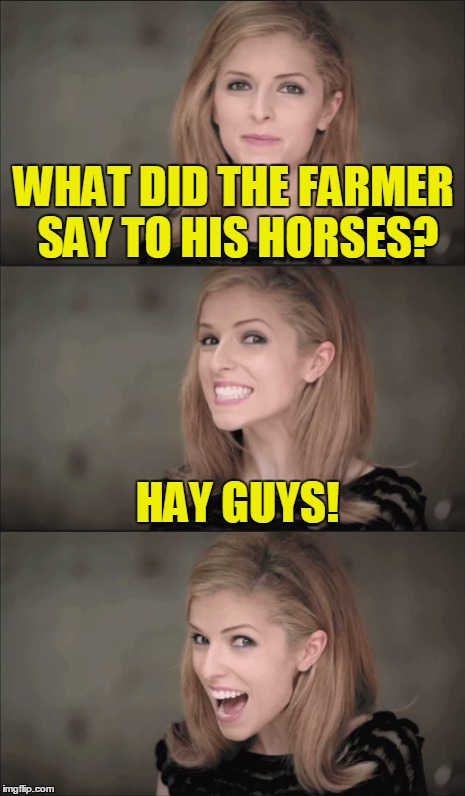 WHAT DID THE FARMER SAY TO HIS HORSES? HAY GUYS! | made w/ Imgflip meme maker