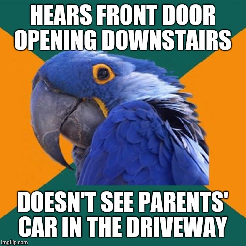 Home invasion victims be like... |  HEARS FRONT DOOR OPENING DOWNSTAIRS; DOESN'T SEE PARENTS' CAR IN THE DRIVEWAY | image tagged in memes,paranoid parrot,home alone,break in,home invasion,burglar | made w/ Imgflip meme maker