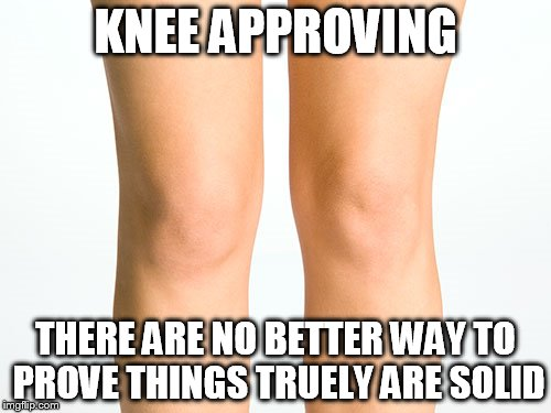Knees | KNEE APPROVING THERE ARE NO BETTER WAY TO PROVE THINGS TRUELY ARE SOLID | image tagged in knees | made w/ Imgflip meme maker