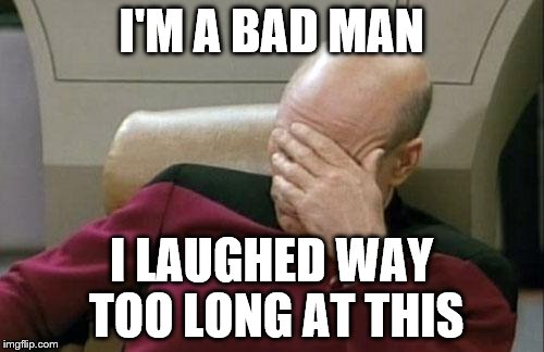 Captain Picard Facepalm Meme | I'M A BAD MAN I LAUGHED WAY TOO LONG AT THIS | image tagged in memes,captain picard facepalm | made w/ Imgflip meme maker