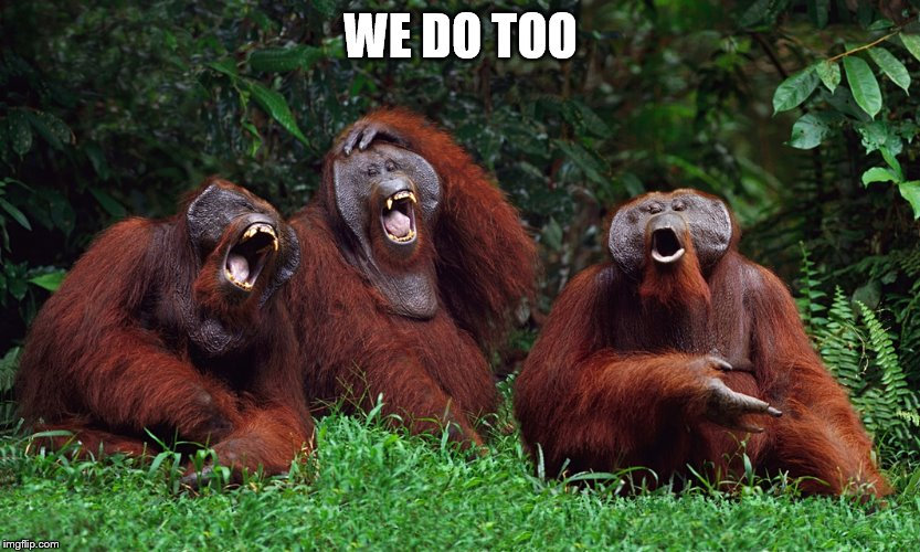 laughing orangutans | WE DO TOO | image tagged in laughing orangutans | made w/ Imgflip meme maker