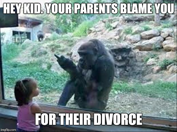 Bad Monkey | HEY KID. YOUR PARENTS BLAME YOU FOR THEIR DIVORCE | image tagged in bad monkey | made w/ Imgflip meme maker
