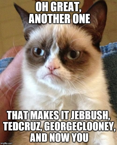 Grumpy Cat Meme | OH GREAT, ANOTHER ONE THAT MAKES IT JEBBUSH, TEDCRUZ, GEORGECLOONEY, AND NOW YOU | image tagged in memes,grumpy cat | made w/ Imgflip meme maker