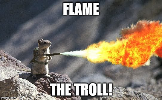 FLAME THE TROLL! | made w/ Imgflip meme maker