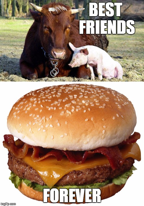 Best Friends Forever | BEST FRIENDS FOREVER | image tagged in cow,pig,bacon,cheeseburger,meme,memes | made w/ Imgflip meme maker