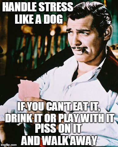 11axh4 actual advice for men by rhett butler imgflip