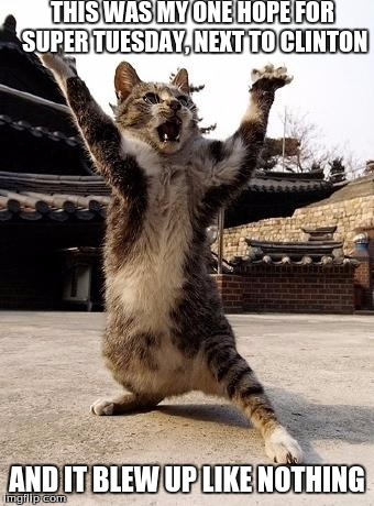 kung fu kitten | THIS WAS MY ONE HOPE FOR SUPER TUESDAY, NEXT TO CLINTON AND IT BLEW UP LIKE NOTHING | image tagged in kung fu kitten | made w/ Imgflip meme maker