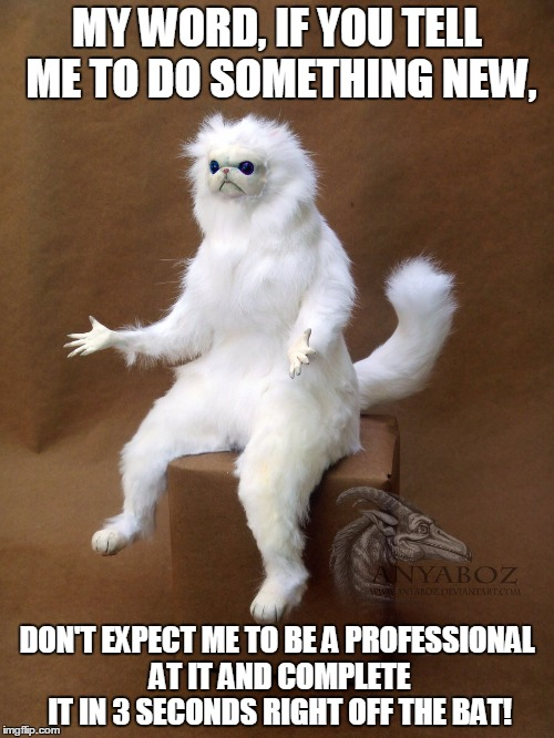 Please Understand All Humans Make Mistakes! | MY WORD, IF YOU TELL ME TO DO SOMETHING NEW, DON'T EXPECT ME TO BE A PROFESSIONAL AT IT AND COMPLETE IT IN 3 SECONDS RIGHT OFF THE BAT! | image tagged in persian cat room guardian | made w/ Imgflip meme maker