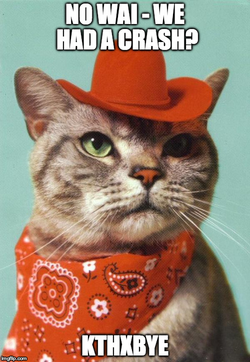 NO WAI - WE HAD A CRASH? KTHXBYE | image tagged in cowboy cat | made w/ Imgflip meme maker