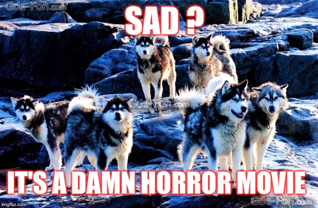 SAD ? IT'S A DAMN HORROR MOVIE | made w/ Imgflip meme maker