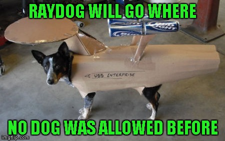 RAYDOG WILL GO WHERE NO DOG WAS ALLOWED BEFORE | made w/ Imgflip meme maker