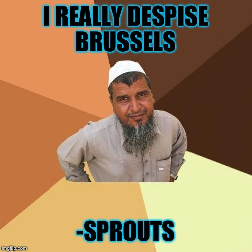 In all seriousness though, my thoughts and prayers are with all the victims of that barbaric attack. | I REALLY DESPISE BRUSSELS -SPROUTS | image tagged in memes,ordinary muslim man,brussels | made w/ Imgflip meme maker