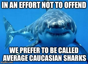 IN AN EFFORT NOT TO OFFEND WE PREFER TO BE CALLED AVERAGE CAUCASIAN SHARKS | made w/ Imgflip meme maker