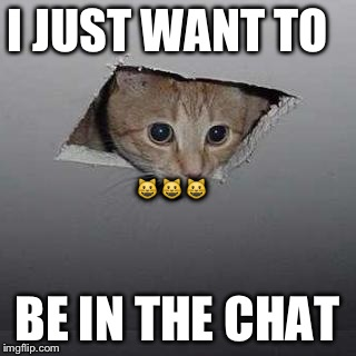 Ceiling Cat Meme | I JUST WANT TO BE IN THE CHAT  | image tagged in memes,ceiling cat | made w/ Imgflip meme maker