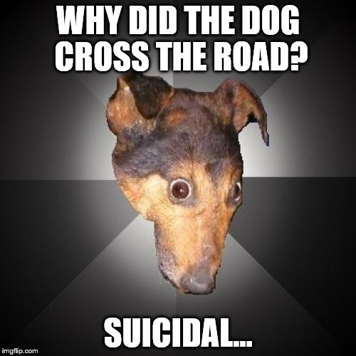 Depression Dog | WHY DID THE DOG CROSS THE ROAD? SUICIDAL... | image tagged in memes,depression dog | made w/ Imgflip meme maker