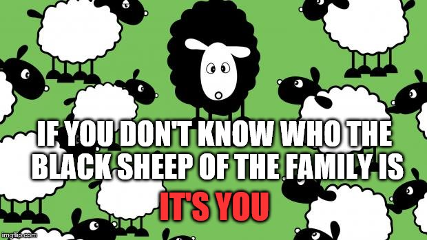 I'm sure that doesn't apply to anyone here...  | IT'S YOU IF YOU DON'T KNOW WHO THE BLACK SHEEP OF THE FAMILY IS | image tagged in memes,black sheep | made w/ Imgflip meme maker