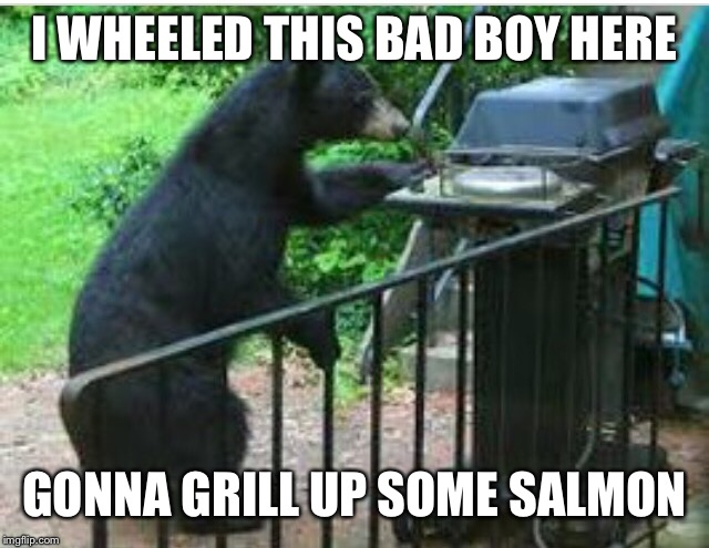 I WHEELED THIS BAD BOY HERE GONNA GRILL UP SOME SALMON | made w/ Imgflip meme maker