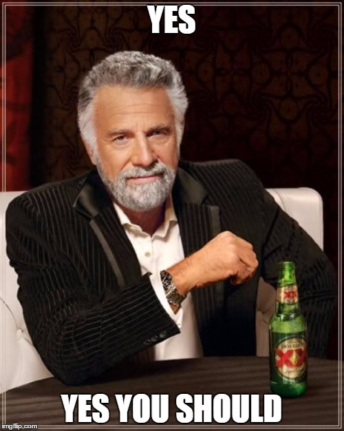 The Most Interesting Man In The World Meme | YES YES YOU SHOULD | image tagged in memes,the most interesting man in the world | made w/ Imgflip meme maker