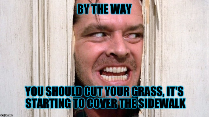 BY THE WAY YOU SHOULD CUT YOUR GRASS, IT'S STARTING TO COVER THE SIDEWALK | made w/ Imgflip meme maker