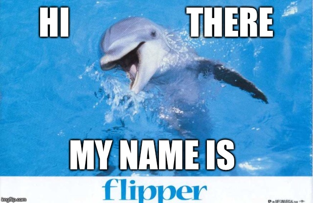 HI                  THERE MY NAME IS | made w/ Imgflip meme maker