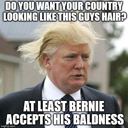DO YOU WANT YOUR COUNTRY LOOKING LIKE THIS GUYS HAIR? AT LEAST BERNIE ACCEPTS HIS BALDNESS | made w/ Imgflip meme maker