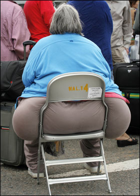 Image result for fat lady chair