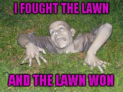 I FOUGHT THE LAWN AND THE LAWN WON | made w/ Imgflip meme maker
