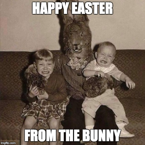 HAPPY EASTER | HAPPY EASTER FROM THE BUNNY | image tagged in easter,happy easter,bunny,easter bunny | made w/ Imgflip meme maker
