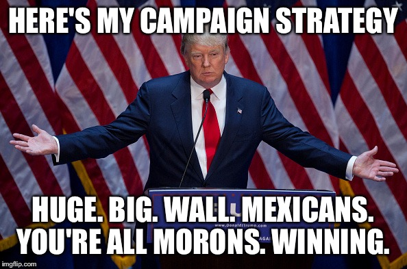 Donald Trump | HERE'S MY CAMPAIGN STRATEGY HUGE. BIG. WALL. MEXICANS. YOU'RE ALL MORONS. WINNING. | image tagged in donald trump | made w/ Imgflip meme maker
