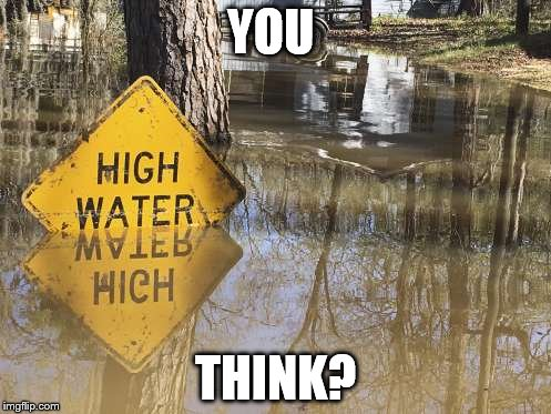You think? | YOU THINK? | image tagged in sign,water,high | made w/ Imgflip meme maker