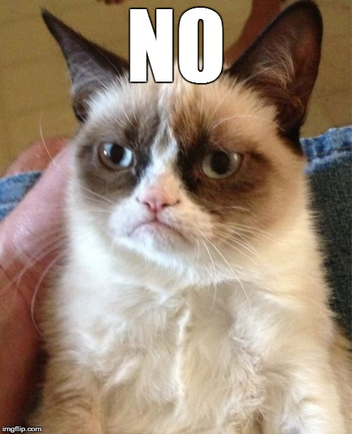 Grumpy Cat Meme | N0 | image tagged in memes,grumpy cat | made w/ Imgflip meme maker